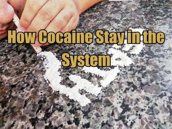 How Cocaine Stay in the System