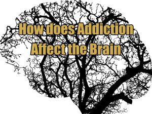 effects of addiction on the brain
