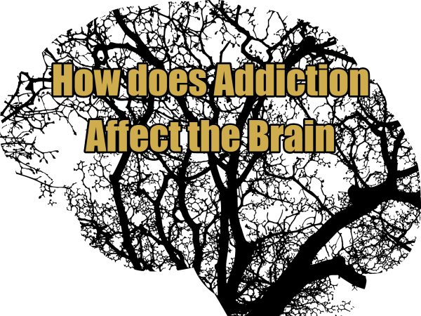 How does Addiction Affect the Brain