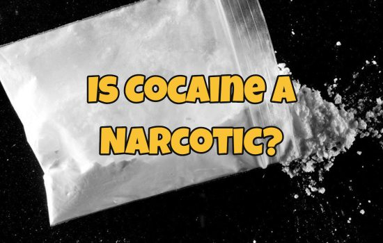 Is Cocaine a Narcotic