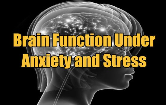 Brain Function Under Anxiety and Stress