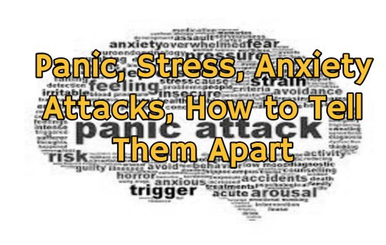 Panic, Stress, Anxiety Attacks, How to Tell Them Apart, and Why? | West Palm Beach